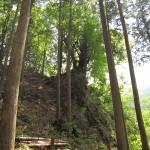 せせらぎキャンプ場の山のキャンプサイトから見上げることができます