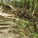 伊豆ヶ岳への入口