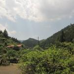 南川の村落