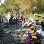 水棲生物観察会
