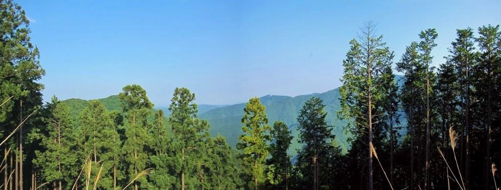 山の見晴らし