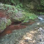 淵の赤い岩